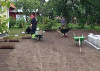Stylar Trädgård Umeå. Lägga ny gräsmatta
